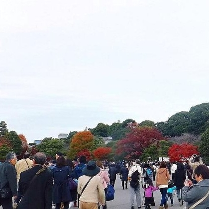 Opening of Inui Street to the public (Tokyo Imperial Palace)